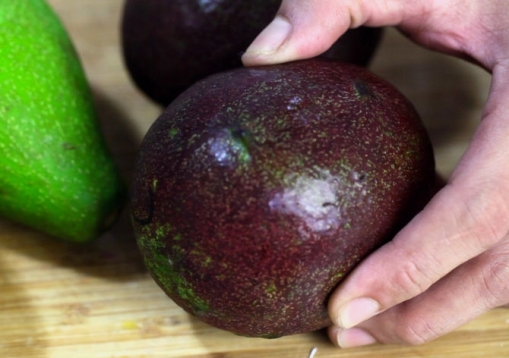 670px-Choose-Avocados-Step-3